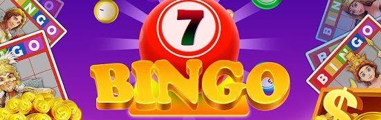 online bingo logo image